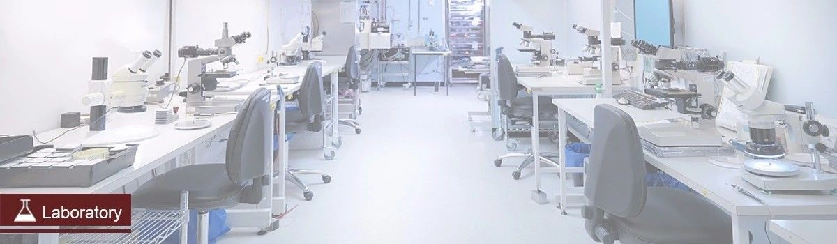 China best ESD Cleanroom Chairs on sales